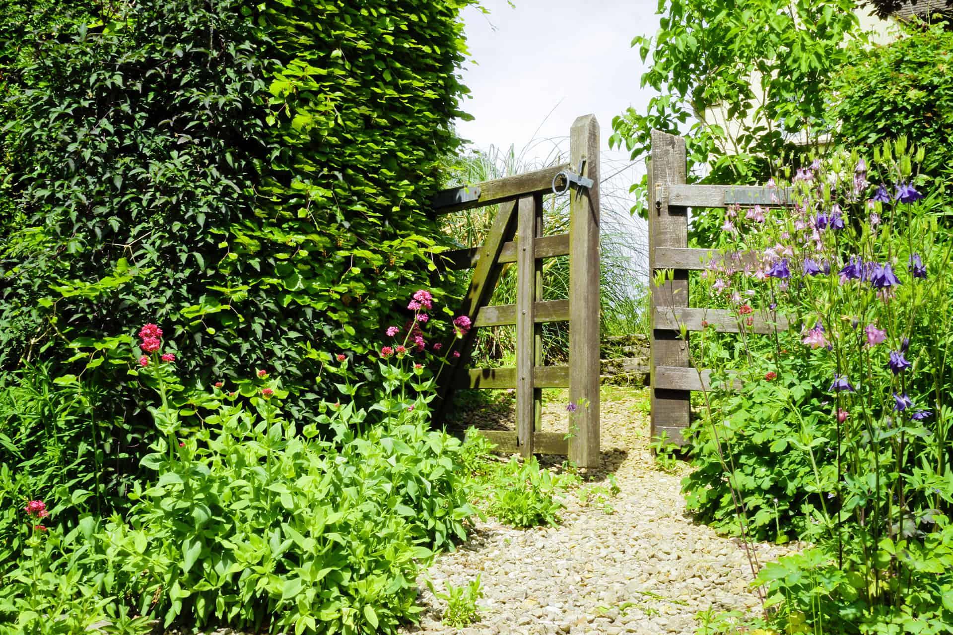 Our Wonderful Gardens