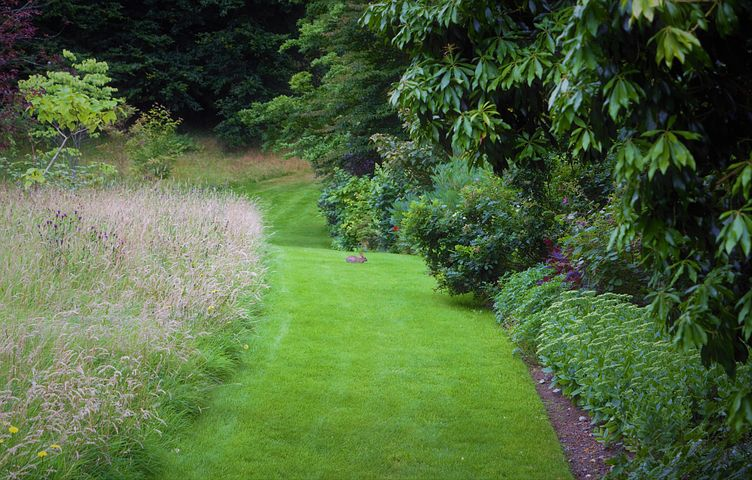 Well-established gardens are back in horticultural fashion